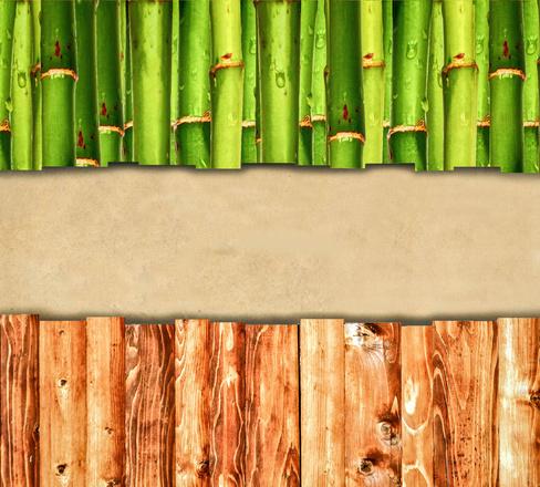 So sánh tre và gỗ